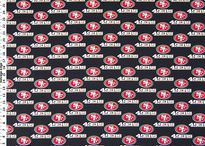 49ers deco / by Jessica Brown