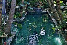 Pool Dream.!