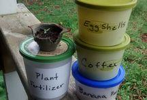 Vegetable Organic Planting