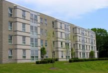 College Life Basics / Not entirely sure what to expect when you first arrive at Ship? Try some of these pins to help that move!  / by Shippensburg University Housing & Residence Life