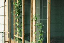 Gardening ideas / by Nadia Ibtihaj