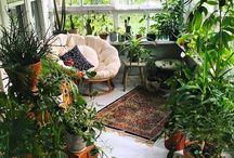 Plant heaven