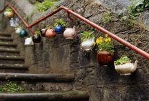 Quirky & Cute Gardens