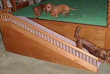 Doggy ramps