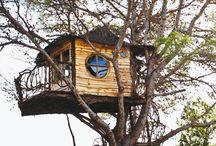 Sust House Design local materials