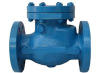 Check Valve / We are Leading  Manufacturer, Exporter, Supplier of Check Valve, Industrial Valves, Ball Valves, Ball Check Valves, Double Check Valves, Wafer Check Valves, India.