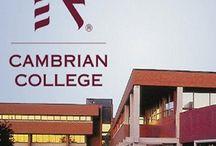 Delegate Visit at Riya Education - Cambrian College, Canada