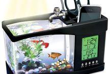 Fishies!!!!