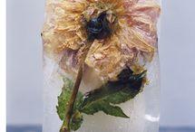 Fleur / by Linda Trau