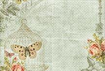 Carteles e ilustraciones