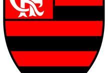 coisas do Flamengo