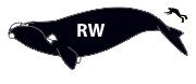 Whales - Thar she blows