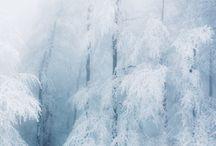 Talvi / Maalaus