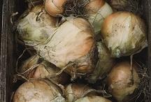 Fotos que nos gustan  / La belleza de las cebollas está infravalorada, con este tablón te lo que queremos demostrar.