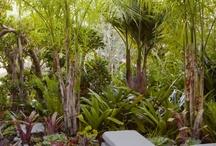 Future Gardens?