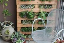 Pallets and gardens