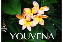 YOUVENA Aesthetic Medicine Educational Center / Aesthetic Medicine Education