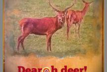 Dear oh Deer it's Christmas Again
