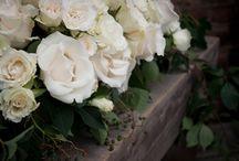 Flowers :) / by Julie Rachelle