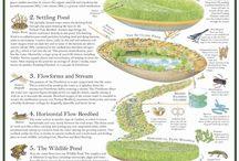grey water & wetland