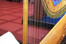 Harp at cocktail hour wedding