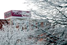 Seasons at Augsburg College / From sun to sleet, showers to snowflakes -- Augsburg's location in the heart of the Midwest features every season.
