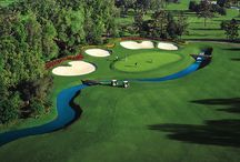 LPGA 2015 / We are proud to announce that in January 2015 the LPGA Tour will be starting their season off here at Golden Ocala Golf and Equestrian Club!