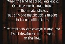 Quotes / Inspirational