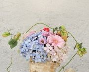 Centerpiece of late summer, rustic lovely