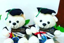 Teddy Bear Wisuda Imut