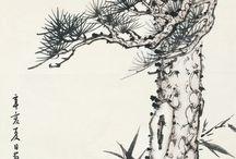 소나무 등