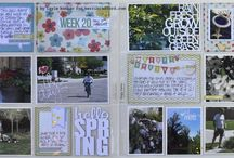 Scrapbook - Simple Stories and Project Life
