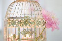 ღ ♥ ღDecorative bird Cagesღ ♥ ღ / by ¸.•♥•.¸¸.•♥•Rachel•♥•.¸¸.•♥•.¸