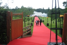Bees Marquees corporate events