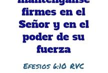 Efesios 6 / by Sociedad Biblica Chilena