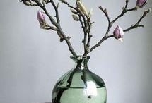 bloemen/planten ideetjes