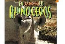 Reading Rhinos