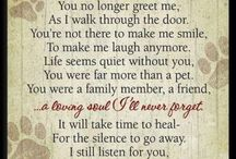 Grief ~ pets, people