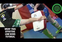 Kickboxing Sporty Walki / SPORTY WALKI