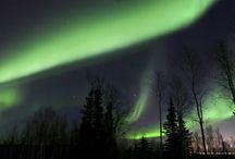 Northern Lights /Aurora's / by Charlene Thompson