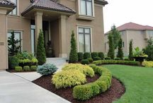 Landscaping Goals / What's on the inside is what's most important, but when it comes to your home, the outside is pretty important too!