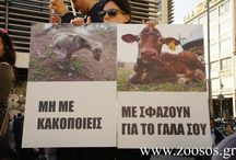 Greek protest for Animal Rights March 2014