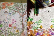 pics to colour