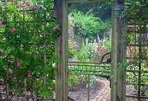 trädgård - staket