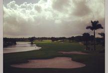 Golf Shots / Beautiful Golf holes around the world