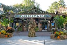 Amazing Atlanta Attractions