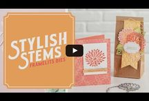 Stampin' Up! - Special Reason