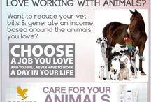 Forever állatoknak