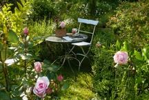 4 saisons dans mon jardin ‿  ✿ / Mon petit jardin français , retrouvez le au cours des saisons au lien suivant:  http://heleneflont.blogspot.fr/search/label/jardin ✿ https://twitter.com/hflont/