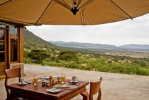 Buffalo Luxury Camp / Luxurious accommodation in the Kleins area of the Serengeti National Park offering exceptional experiences to include nature and game walks, night game drives, off road game drives, bush cocktails and dinners and cultural exchanges with the Maasai of Ololosokwan, an authentic village unspoilt by mass tourism. / by Intimate Places Tanzania